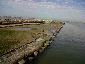 Barena Sacca Pelà-Canale Cenesa