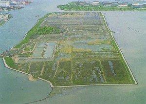 Vista dell'isola delle Tresse nel 2000-prima dei lavori